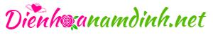 logo điện hoa nam định