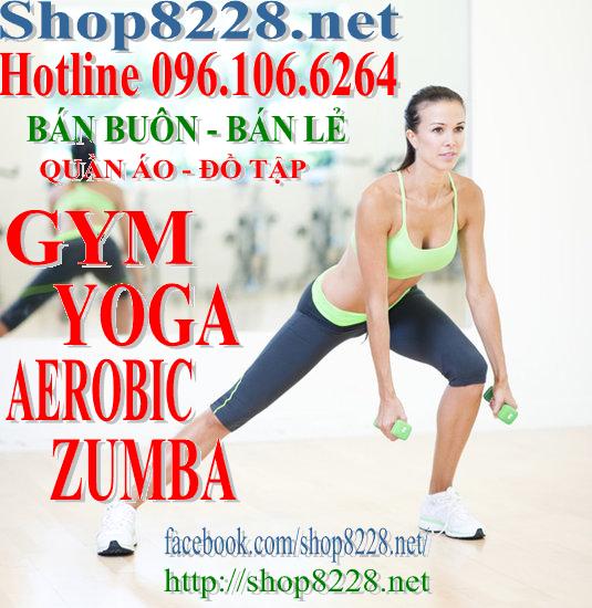 QUẦN ÁO TẬP GYM - Aerobic - Yoga - Fitness