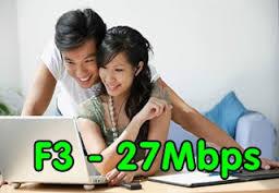 Fiber F3