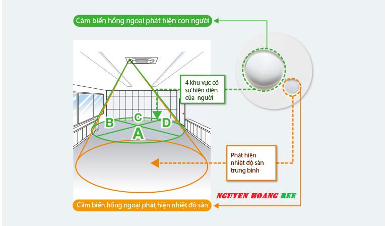 Nguyenhoang Ree Co., Ltd là thầu cơ điện lạnh chuyên nghiệp
