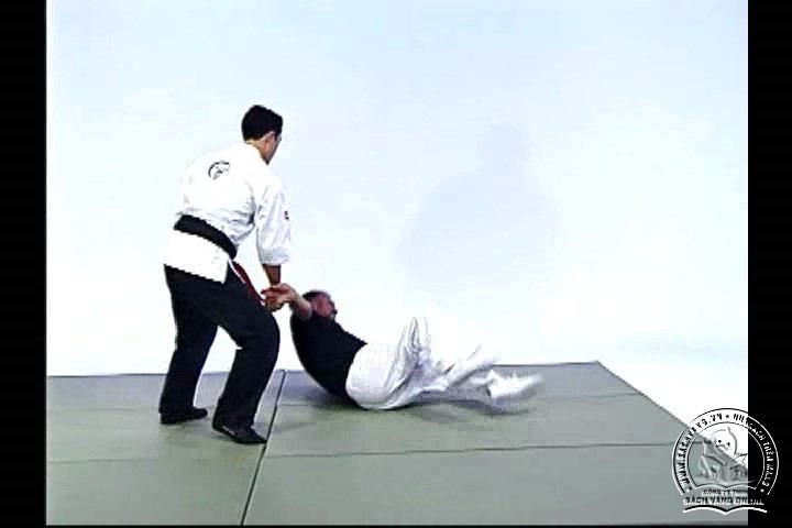 Advanced Small Circle Jujitsu - Fulcrum Activation with Wally and Leon Jay - screenshot 2
