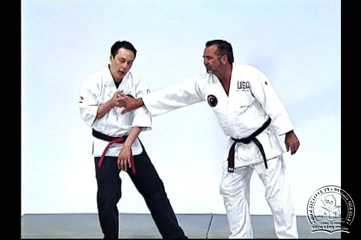 Advanced Small Circle Jujitsu - Fulcrum Activation with Wally and Leon Jay - screenshot 4