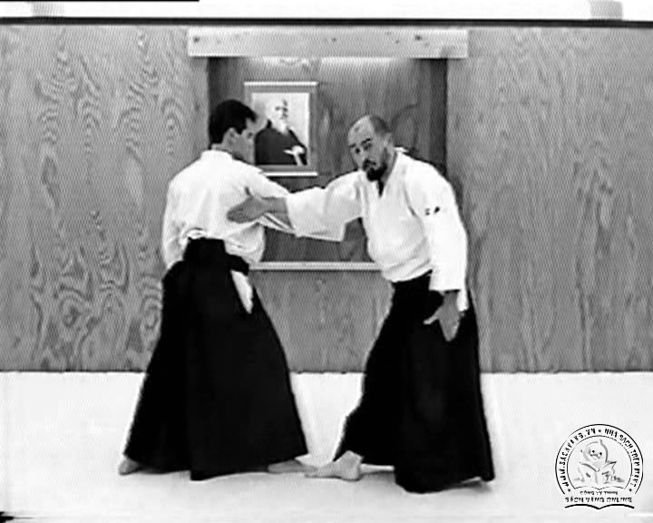 Aikido In Training by Richard and Kathy Crane - Screenshot 3