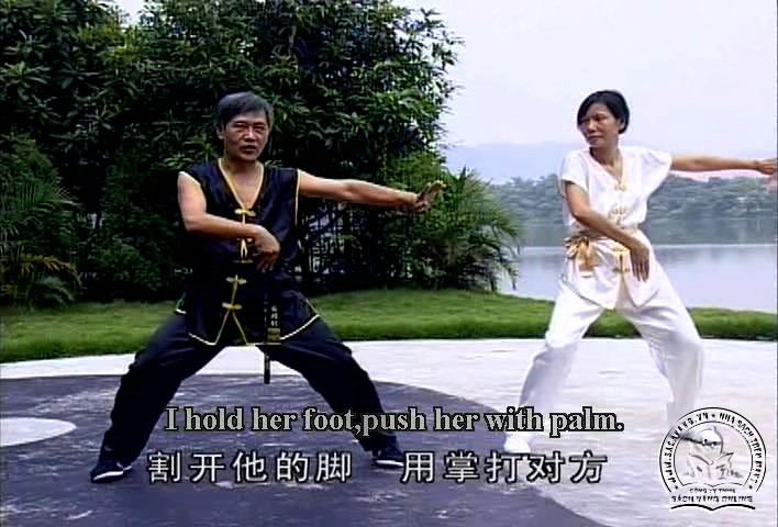 Cai Li Fo Kung Fu Series by Liang Nai Zhao - screenshot 1