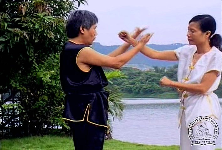Cai Li Fo Kung Fu Series by Liang Nai Zhao - screenshot 2