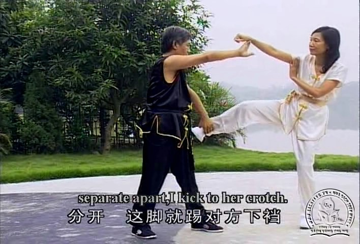 Cai Li Fo Kung Fu Series by Liang Nai Zhao - screenshot 3