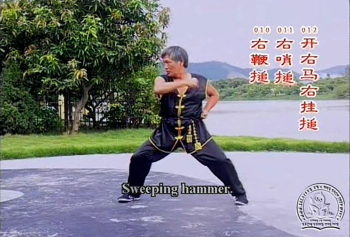 Cai Li Fo Kung Fu Series by Liang Nai Zhao - screenshot 5