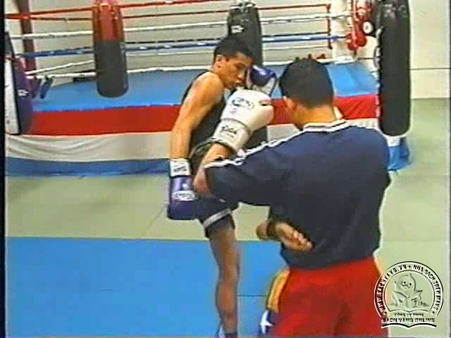 Fairtex Muay Thai - Concepts On Training and Combat Strategy - Screenshot 2
