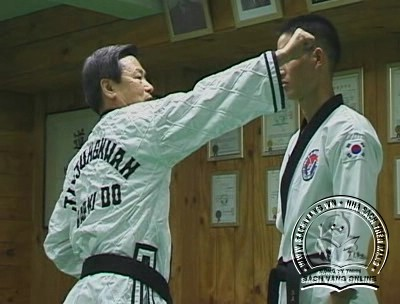 Hapkido Essentials by Myung Yong Kim - screenshot 1