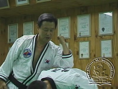 Hapkido Essentials by Myung Yong Kim - screenshot 2