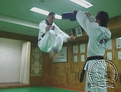 Hapkido Essentials by Myung Yong Kim - screenshot 5