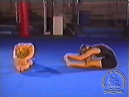 Hapkido In Close Combat by Fariboz Azhakh - Screenshot 1