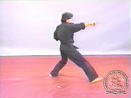 Hapkido In Close Combat by Fariboz Azhakh - Screenshot 2
