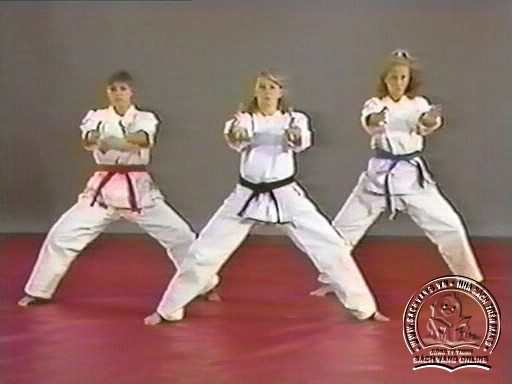 Hapkido In Close Combat by Fariboz Azhakh - Screenshot 3