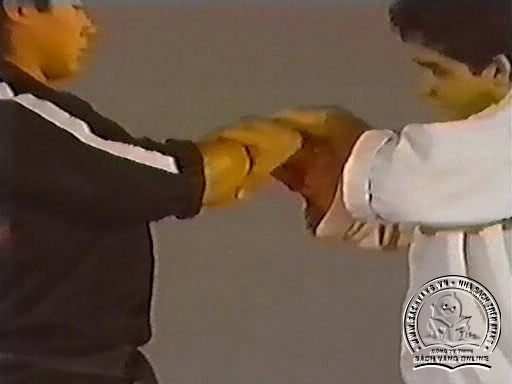 Hapkido In Close Combat by Fariboz Azhakh - Screenshot 4