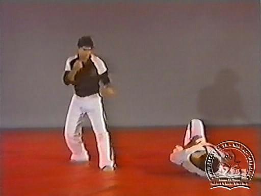 Hapkido In Close Combat by Fariboz Azhakh - Screenshot 5