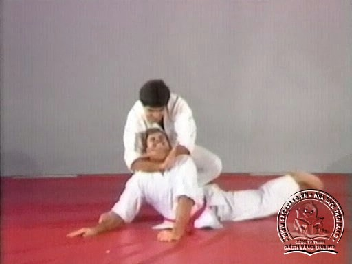 Hapkido In Close Combat by Fariboz Azhakh - Screenshot 6