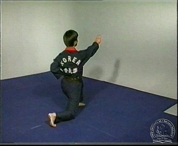 Hapkido by Kim Seong Tae - screenshot 1