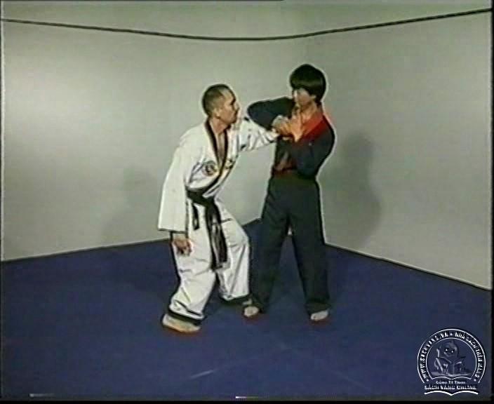 Hapkido by Kim Seong Tae - screenshot 2