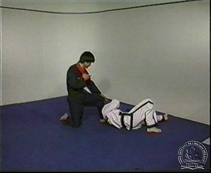 Hapkido by Kim Seong Tae - screenshot 3