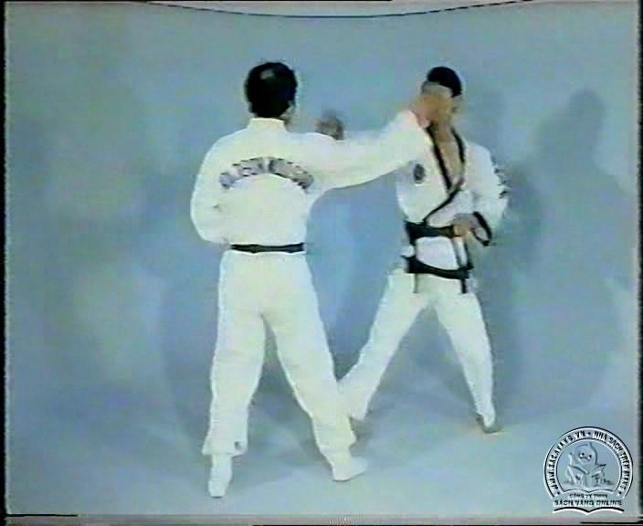Hapkido by Kim Seong Tae - screenshot 5