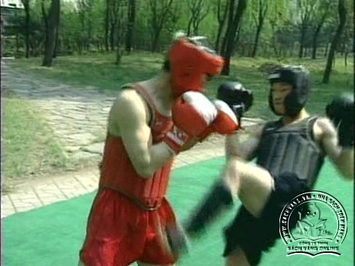 Kung Fu Fighting Chinese Sanshou by Li Shiying - screenshot 2