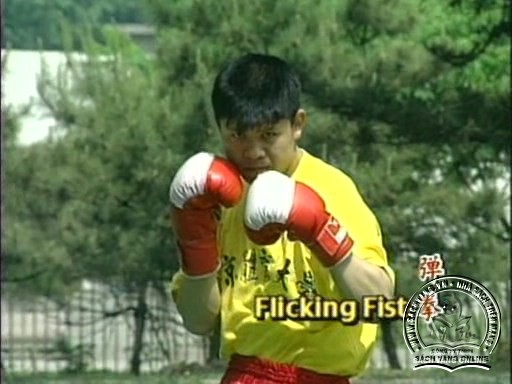 Kung Fu Fighting Chinese Sanshou by Li Shiying - screenshot 3
