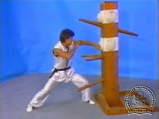 Mastering Choy Lay Fut Kung Fu Wooden Dummy by Tat Mau Wong screenshot 1