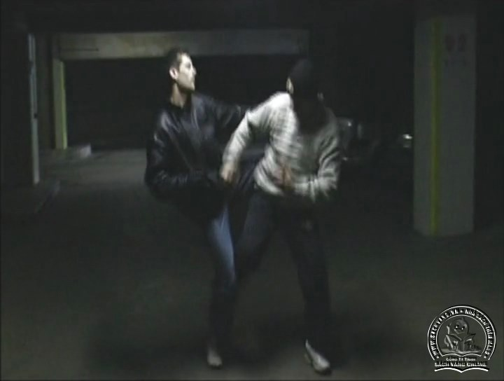 Sambo - Learn How To Fight by Herve Gheldman - screenshot 2
