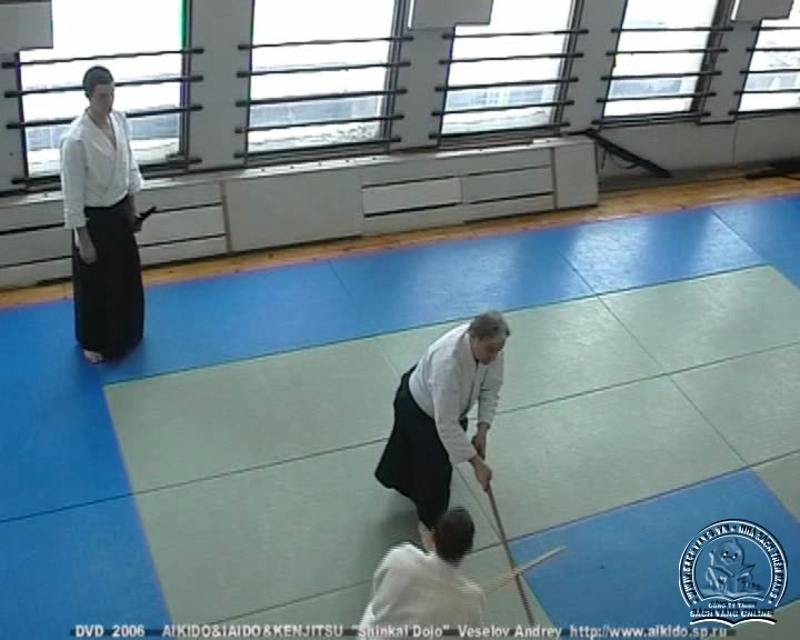 Seminar Aikido, Iaido and Ken Jitsu by Malcolm Tiki Shewan - screenshot 4