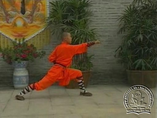Shaolin Kungfu Complete Collection - Screenshot 1