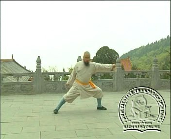 Shaolin Kungfu Complete Collection - Screenshot 3