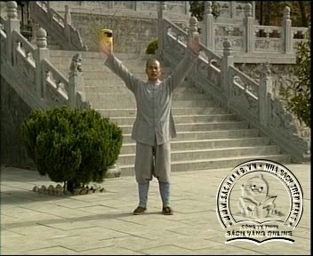 Shaolin Kungfu Complete Collection - Screenshot 4