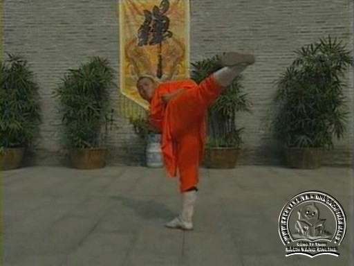Shaolin Kungfu Complete Collection - Screenshot 7