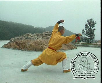 Shaolin Kungfu Complete Collection - Screenshot 8