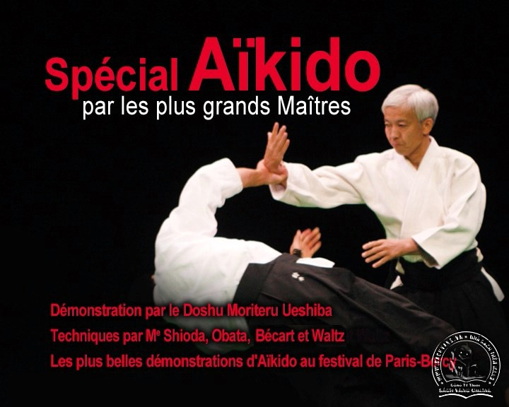 Special Aikido - screenshot 1