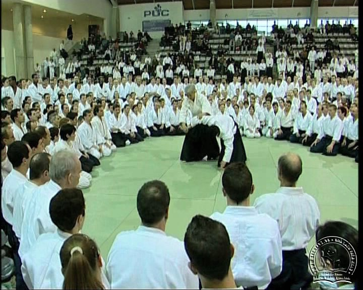 Special Aikido - screenshot 2
