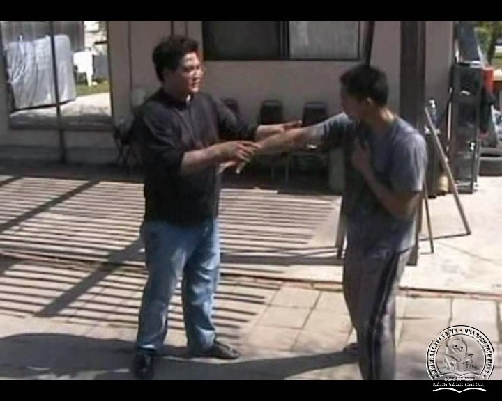 The Butterfly Hands Of Wing Chun - Po Pai by Gary Lam - Screenshot 4