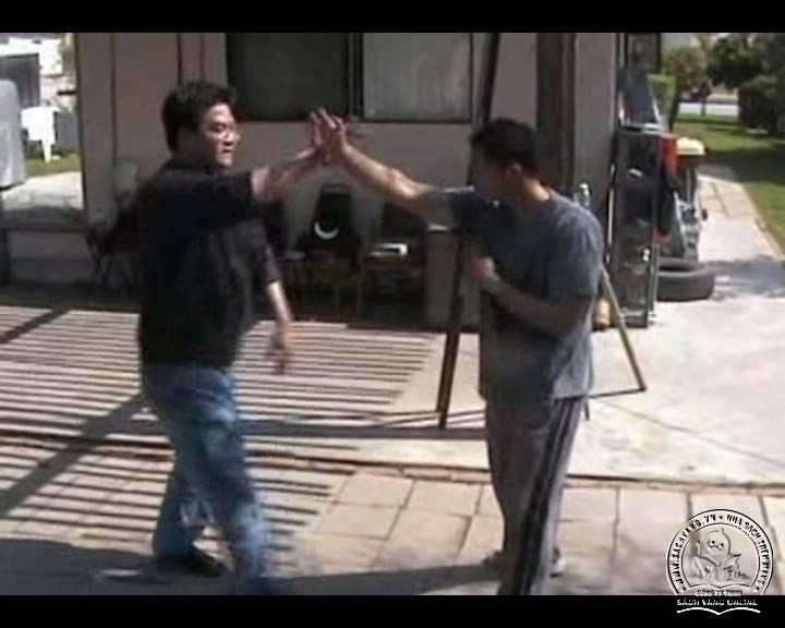 The Butterfly Hands Of Wing Chun - Po Pai by Gary Lam - Screenshot 5