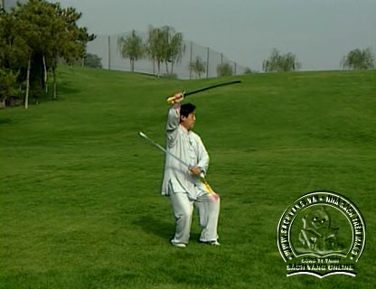 The Chen Style Taiji Double Swords Play by Chen Zhenglei - screenshot 3