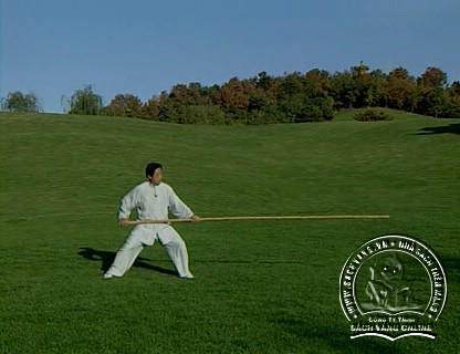 The Chen Style Taiji Double Swords Play by Chen Zhenglei - screenshot 6