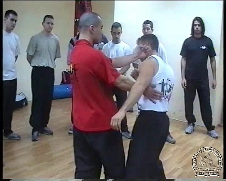 Wing Tzun Seminar by Jannis Simeonidis - screenshot 1