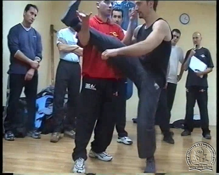 Wing Tzun Seminar by Jannis Simeonidis - screenshot 3