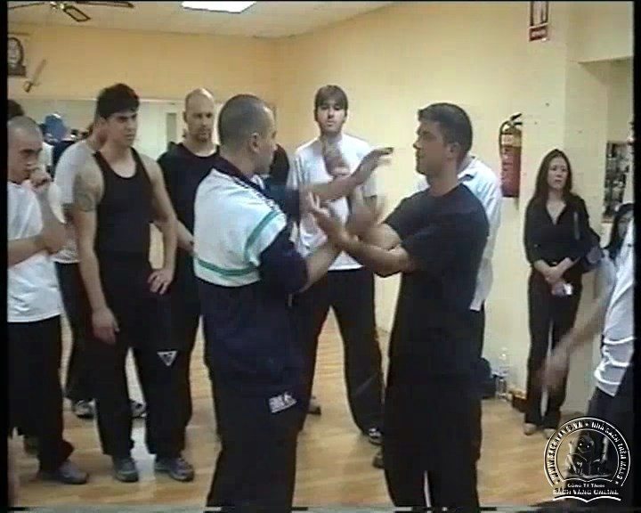 Wing Tzun Seminar by Jannis Simeonidis - screenshot 7