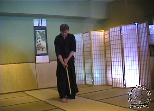 Beginner's Guide To Kendo-Iaido by Jim Wilson pic 3