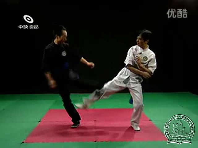 Guangzhou Wing Chun screen shot 6