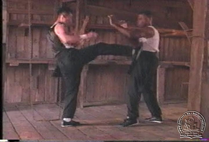 Inspired by Wing Chun Kung Fu With Wai Po Tang pictures 1