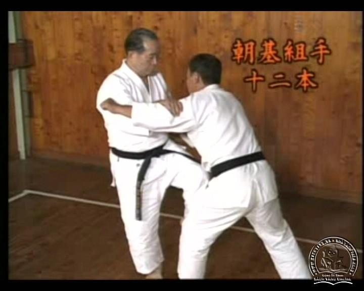 DVD Motobu Ryu Karate Jutsu by Motobu Chomasa screenshot 01