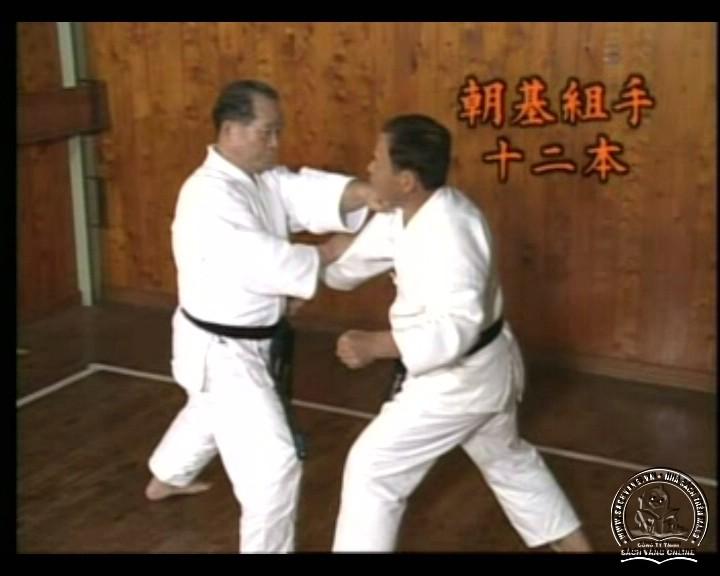 DVD Motobu Ryu Karate Jutsu by Motobu Chomasa screenshot 02