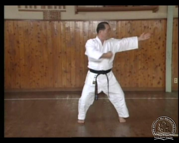 DVD Motobu Ryu Karate Jutsu by Motobu Chomasa screenshot 03